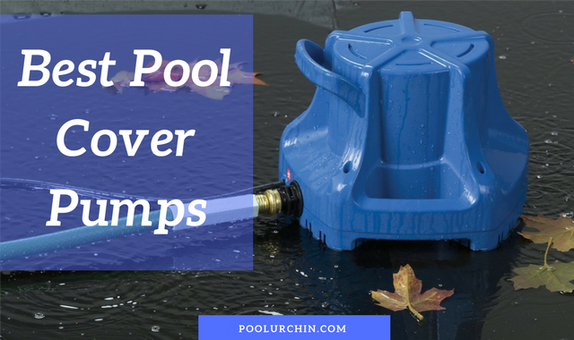 Best Pool Cover Pump Water Removal Pumps