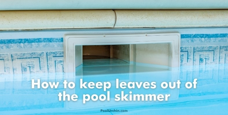 how to keep leaves out of the pool skimmer
