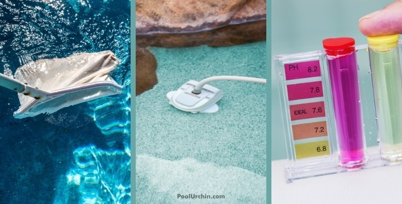 what to do if your pool is full of leaves and algae
